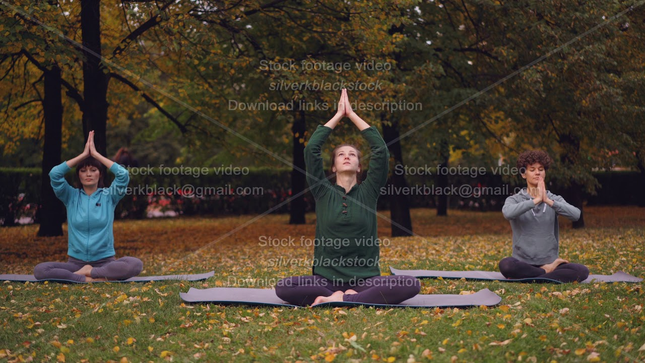 Spititual young women are meditating sitting in lotus position on yoga mats in park and breathing