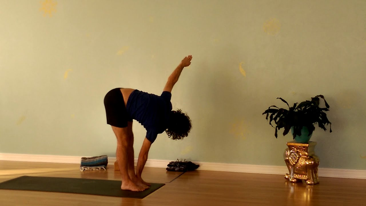 Twists and Back Bends for the Win…..Sunday Yoga Fun with Susan!
