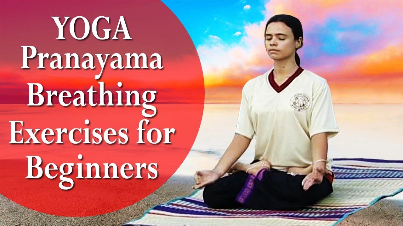 Yoga Pranayama Breathing Exercises for Beginners | Sitting Postures