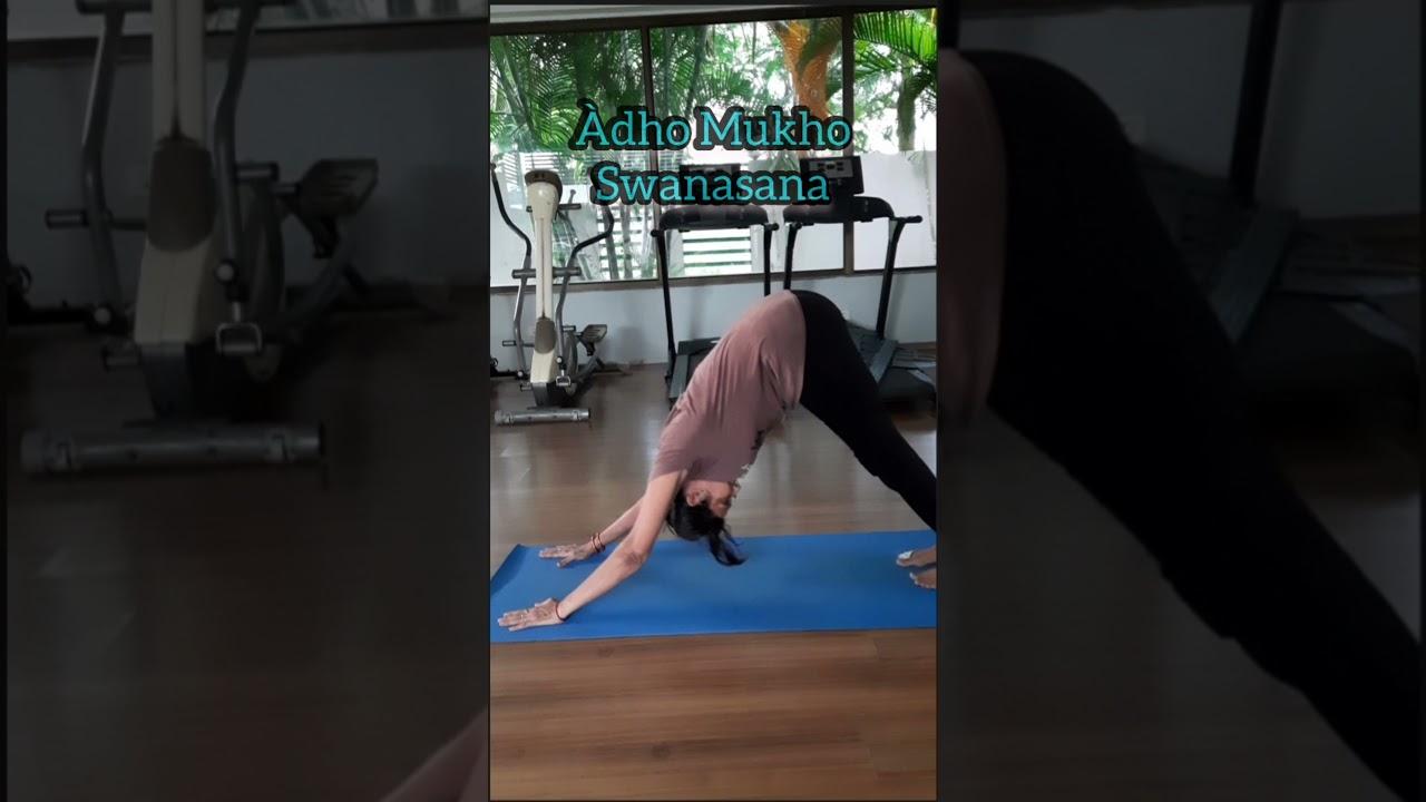 Downward Dog – Downward Facing Dog Yoga Pose |AdhoMukhaSwanasana | variation #shorts #yoga #stretch